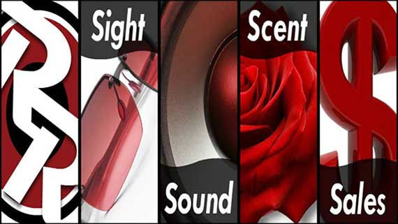 banner-static-01_sight-sound-scent